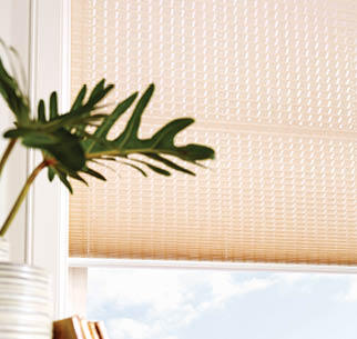 pleated blinds texture